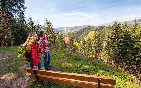 Wandern in Bad Peterstal-Griesbach